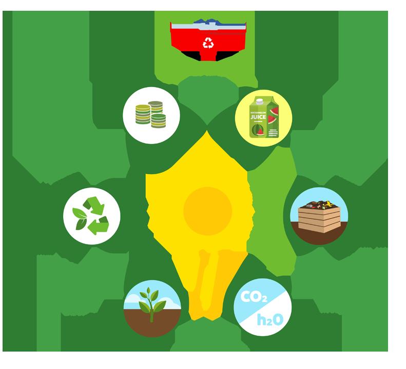Chromogreen bag life cycle